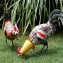 NEW 2x Chicken Garden Pot Plant Metal Decor Statue Ornament Figurine Outdoor Indoor